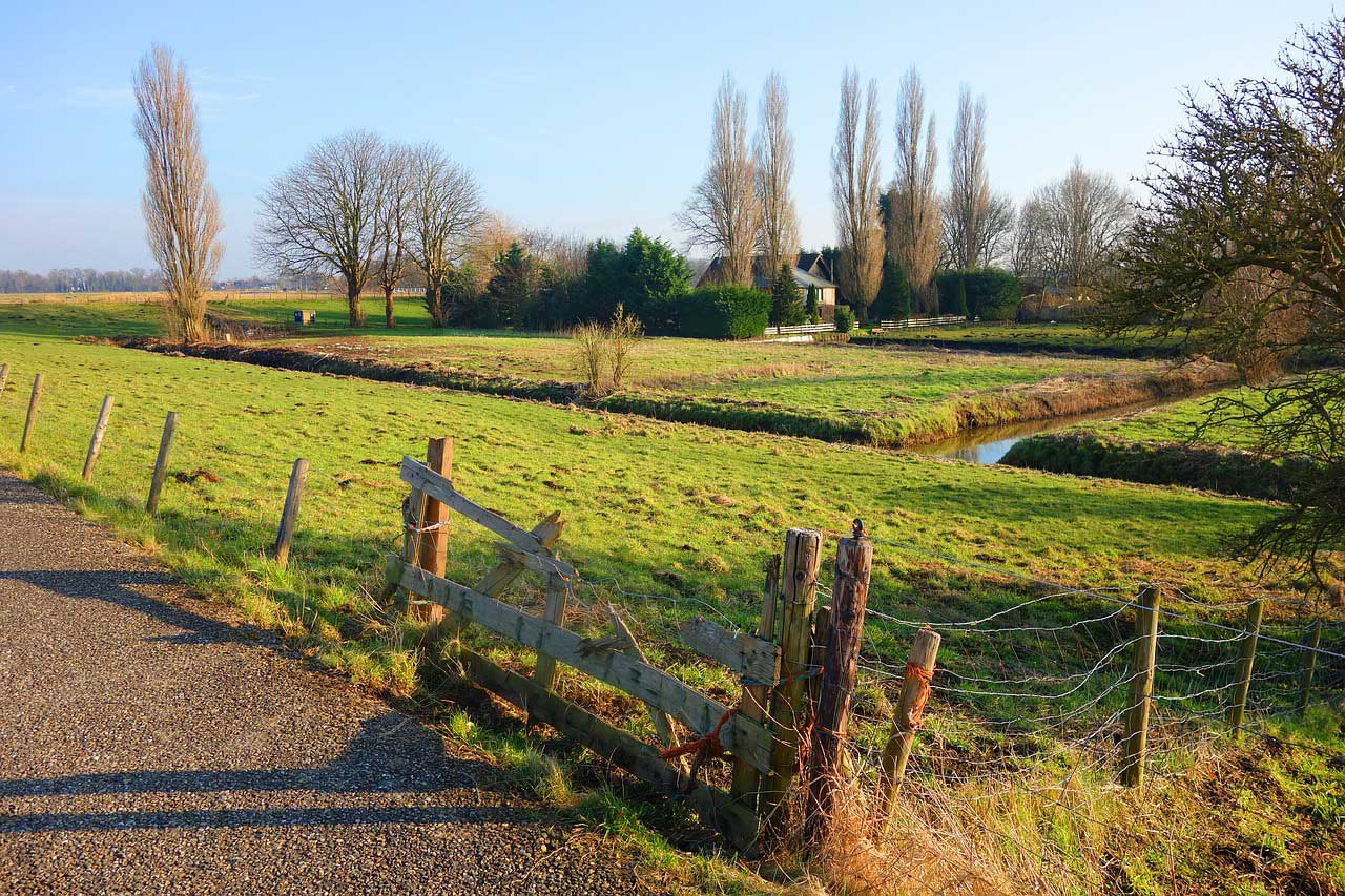 Image of diches - Correct ditch clearing helps prevent flooding in Berkshire and Surrey - Let the digger do it offers all types of ditching services in Berkshire and Surrey.