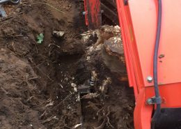 Image of tree stump removal in Wokingham, Berkshire by excavator - Tree stump removal Wokingham, Berkshire - Tree Stump Removal not tree stump grinding in Wokingham, Berkshire - Let The Digger Do It!